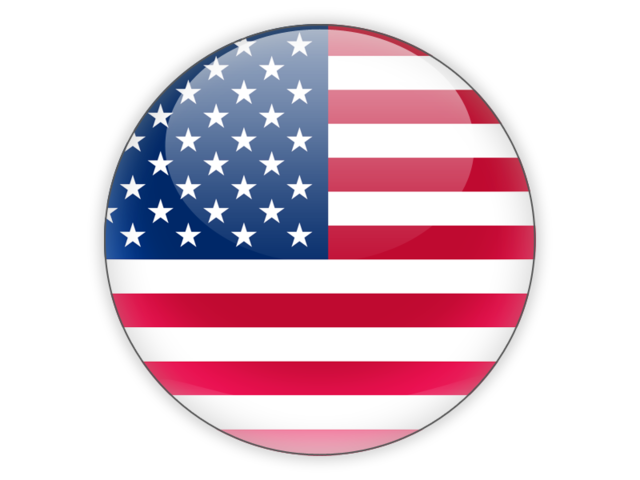 Image result for usa icon